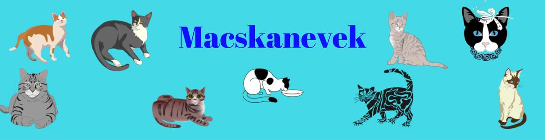 Macskanevek logó - cica nevek, macskanevek, állatnevek, cicanevek, macska nevek